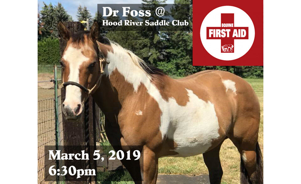 Equine First Aid Presentation 3/5/19