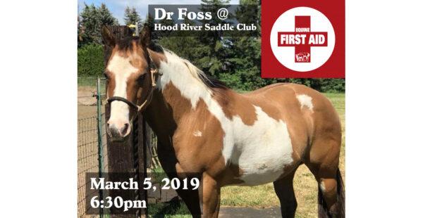 Equine First Aid Presentation 3/5/19